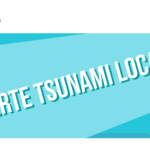 Alerte tsunami: de 10 à 20 cm seulement